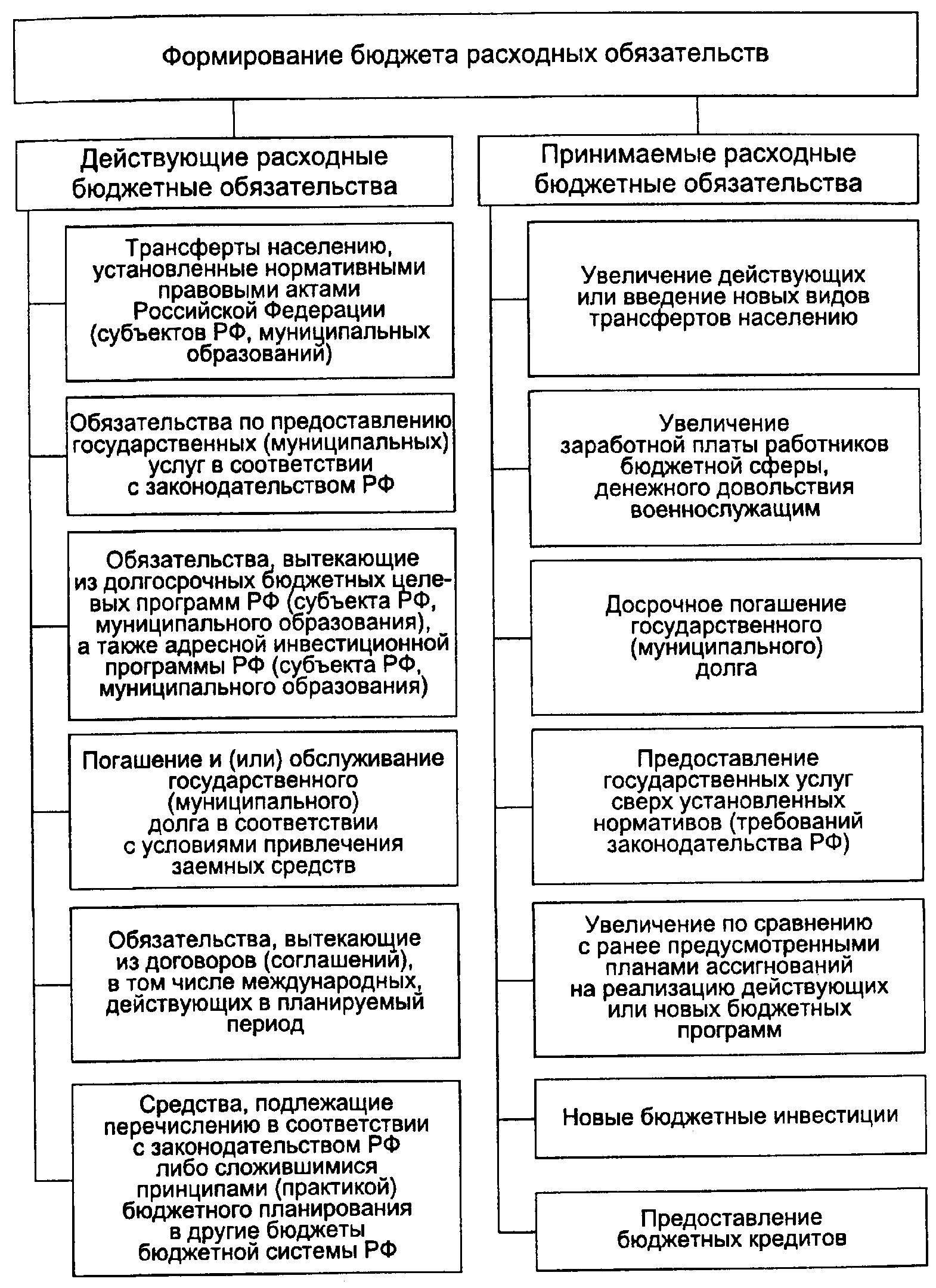 Виды расходных обязательств в рф схема