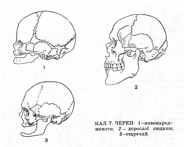 Малыш на приеме у невролога. Форма и размер 28