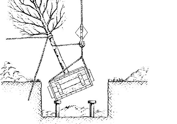 Схема строповки прикорневого