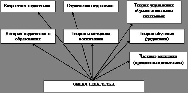 Условия теоретико-методологические основы и принципы деятельности психолога в школе Совхозе Россия Адлер