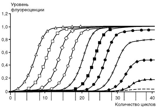 Реакция пцр микробиология 13