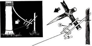 Ловушки для воров своими руками на даче 18