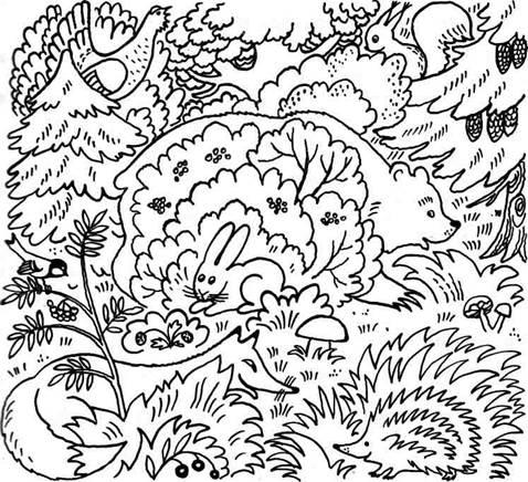 Игра кто спрятался в лесу