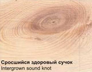 srosshiesya-suchki-chto-eto
